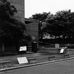 photographers' gallery File 08  「Park City」笹岡 啓子