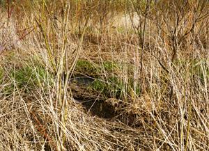 2 大友真志「mid field」 北海道北広島の周辺 タイプCプリント/2007/ed.7 image size:387×531mm print size:508×610mm