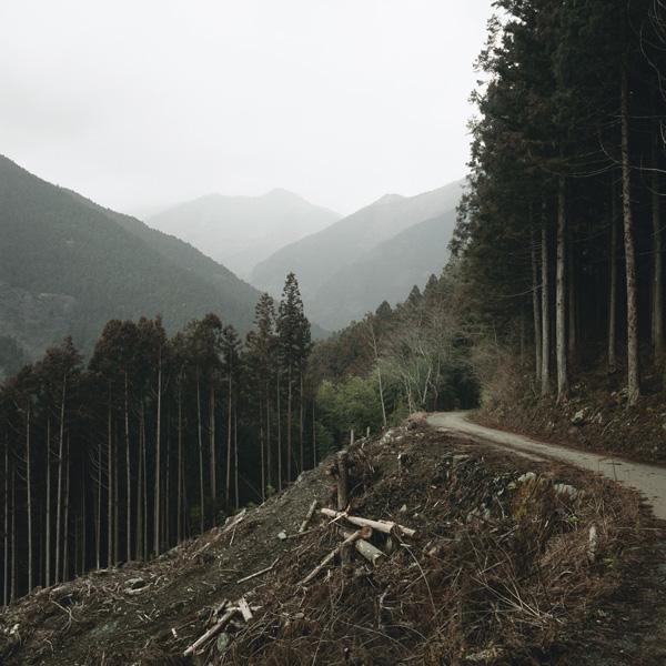 "03-3Keiko Sasaoka/笹岡 啓子: ""True View of Kuma-yama/久万山真景"""