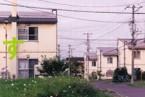 掲載誌:大友真志『みすず 』2012年6月 no.605