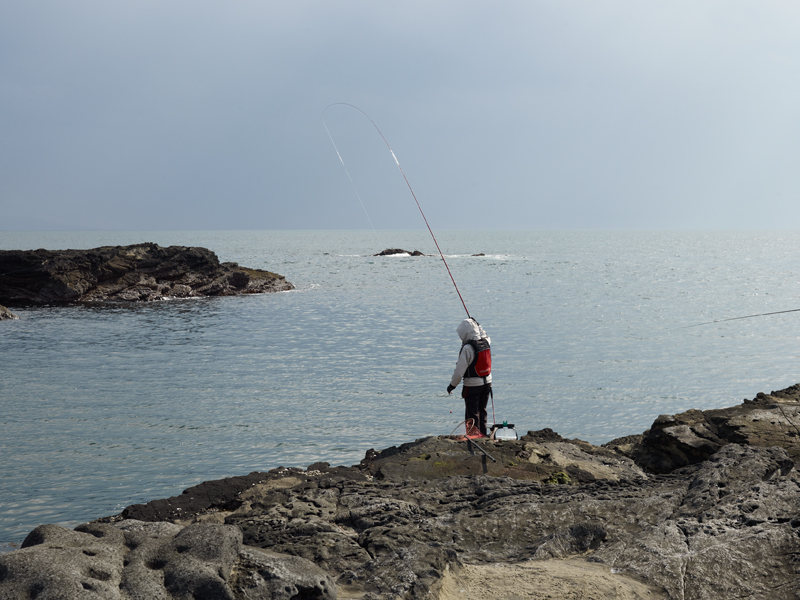 Keiko Sasaoka/笹岡 啓子「Fishing」