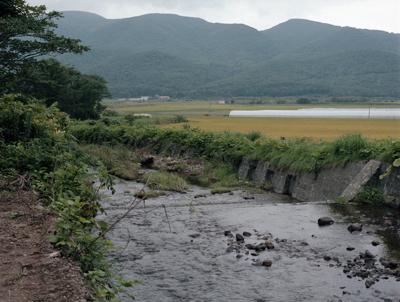 04 大友真志 「Mourai」 タイプCプリント / ed. 8 image size:237×316mm  paper size:279×356mm