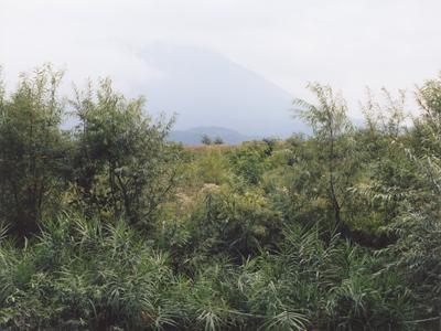 01 大友真志 「Mourai」 タイプCプリント / ed. 8 image size:237×316mm  paper size:279×356mm