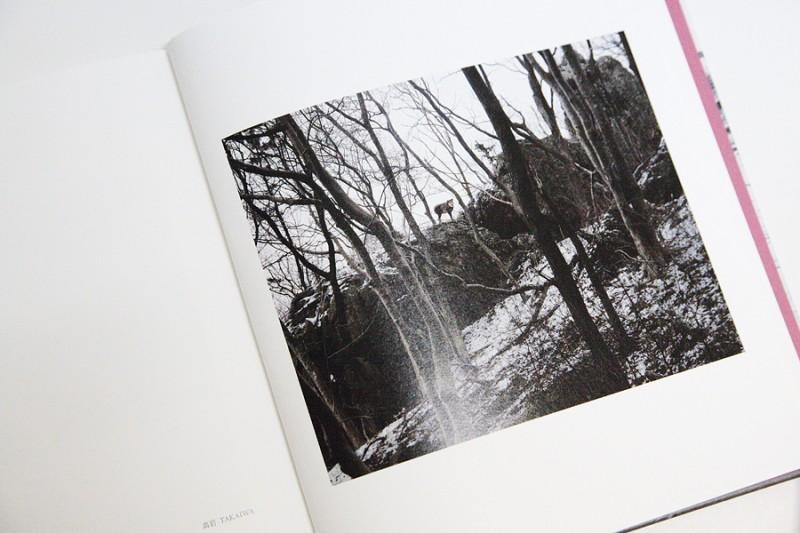 《高岩》、写真集『種差 四十四連図』より