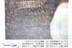 掲載紙:大島尚悟 「ギャラリーbe 」朝日新聞 be on Saturday 2013年10月19日刊