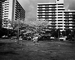 02 本山周平「列島キッド」 256×203mm / ゼラチンシルバープリント / ed.5