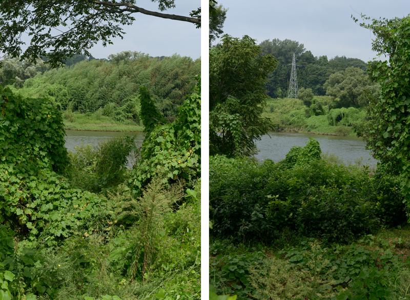 A_River