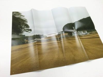 shoreline 16 Keiko Sasaoka