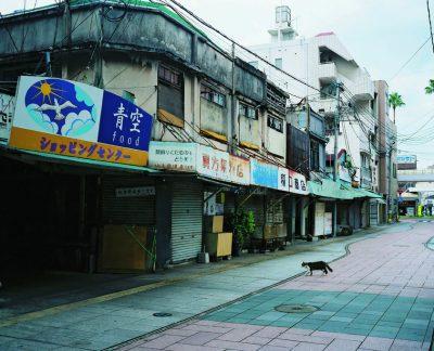 "photographers' gallery 企画 ""土地を紡ぐ"" Ⅱ. 松岡美紀・山野雄樹 展"
