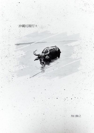 川口和之写真集『沖縄幻視行+』