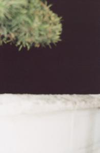 01 中村綾緒「あ わ い 1997-2001 夏 」 60×90cm / タイプCプリント