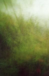 02 中村綾緒「あ わ い 1997-2001 夏 」  60×90cm / タイプCプリント