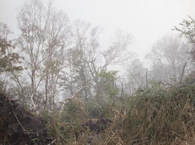 02 大友真志 「Mourai」 タイプCプリント / ed. 8  image size:248×333mm  paper size:279×356mm