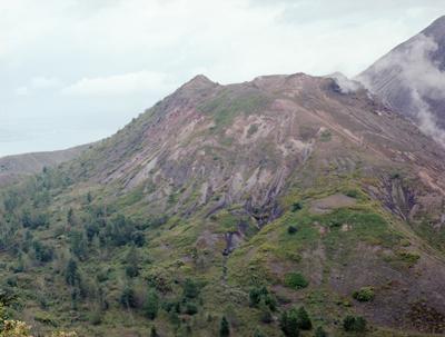 05 大友真志 「Mourai」 タイプCプリント / ed. 8 image size:237×316mm  paper size:279×356mm