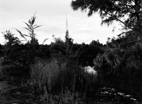 Masashi Otomo/大友 真志『Grace Islands——南大東島、北大東島』