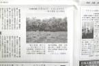 掲載誌:大友真志『Grace Islands』/『赤旗しんぶん』2012年2月26日号