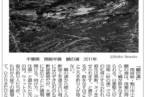 """掲載紙:笹岡啓子 """"海岸線""""『読書人』2012年8月17日号"""