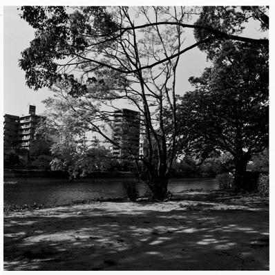 笹岡 啓子 写真集「Park City」