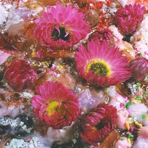 02 高橋万里子「Spring」 20.3×25.4 cm / タイプCプリント / ed.20