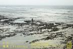 """展覧会:笹岡啓子/Keiko Sasaoka """"海景《FISHING》"""" 京都造形芸術大学 芸術館"""