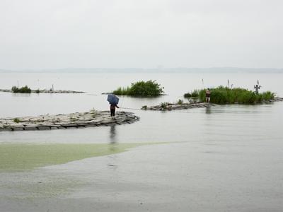 shoreline 12 Keiko Sasaoka