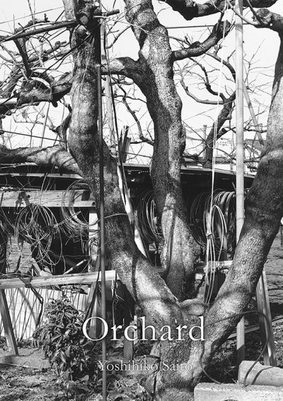 斎藤純彦作品集『Orchard』