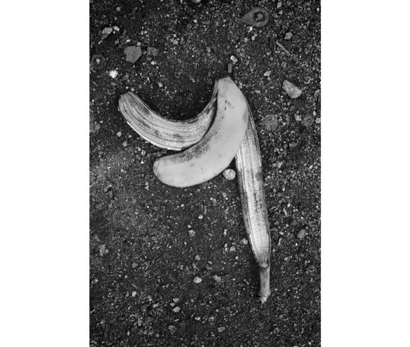 """Kota Kishi/岸 幸太   """"そんな、バナナ"""""""