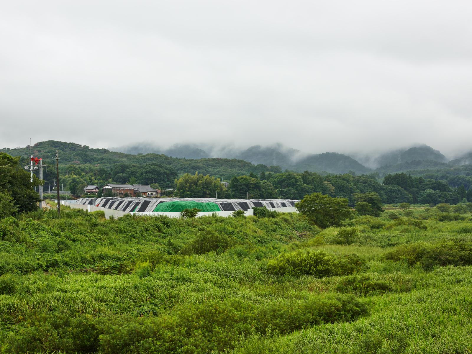 keiko-sasaoka
